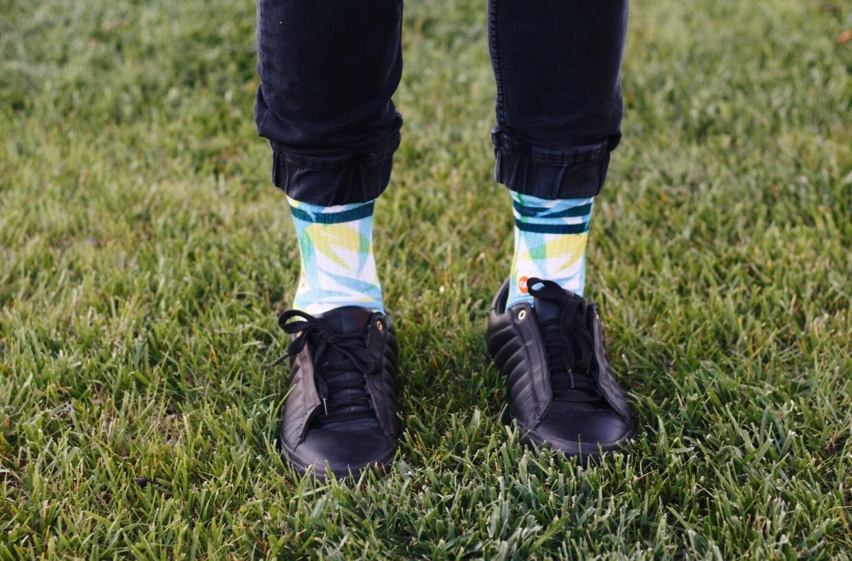 Dynamocks - Spring Socks