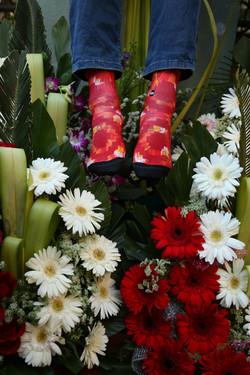 Dynamocks Poinciana Passion socks for Men & Women