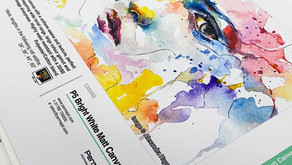 Which Inkjet Canvas Is Right For You?