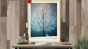 6 Gift Ideas for Photography & Print Lovers