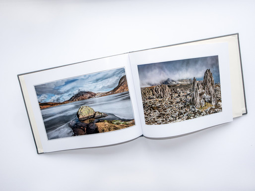 NEW Double-Sided Lustre: Tom Dodd's First Impression