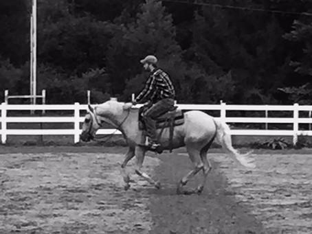 Forget the Labels: Horsemanship is Horsemanship