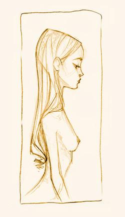 006-profilo.jpg