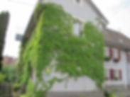 MAISON COTE RUE 3.jpg web