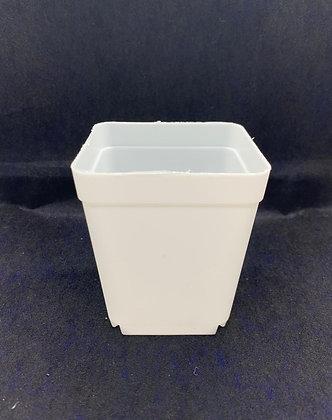 Plastic Pot #107 - (6.5x7.5cm)