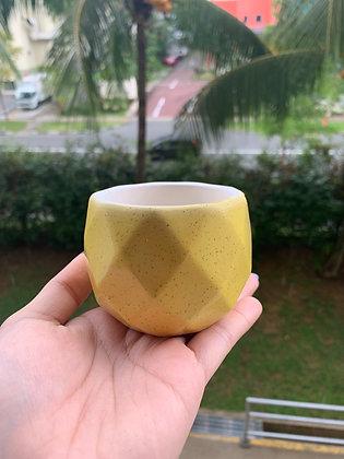 Pot #106 (yellow)