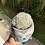 Thumbnail: Mammillaria Plumosa (potted)