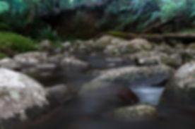 water image.jpg