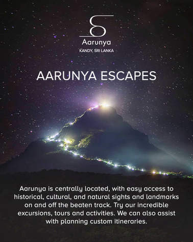 Aarunya Escapes Packages