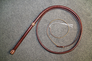 B3 12 Plait Whisky bullwhip with Natural highlights