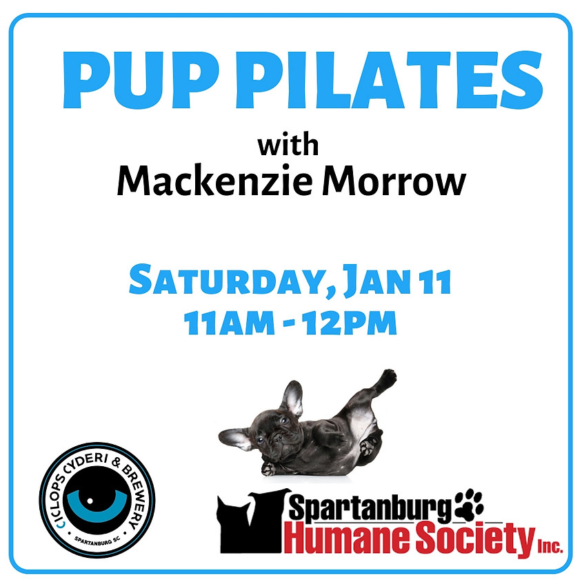 Pup Pilates