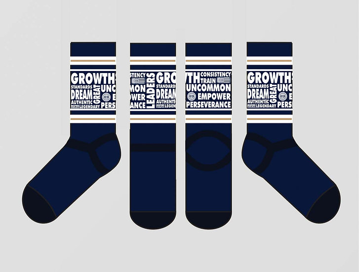 """**SOLD OUT** """"Words to Live By"""" Socks"""