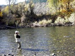 Trinity River Fly Fishing