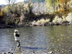 Trinity River Fly Fishing