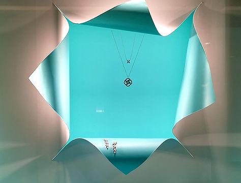 necklace in the window case.jpg