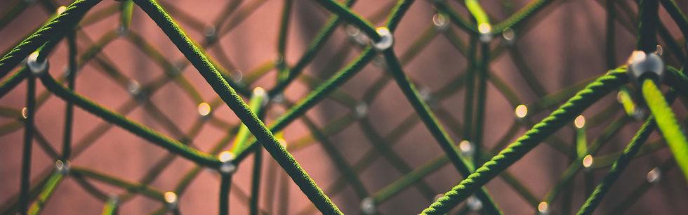 network-1246209_1920-web.jpg