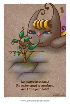 無論身處多苛刻的環境 不要放棄希望!