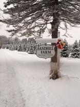 Sandhill Farm