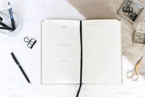 100 day journal-3.jpg