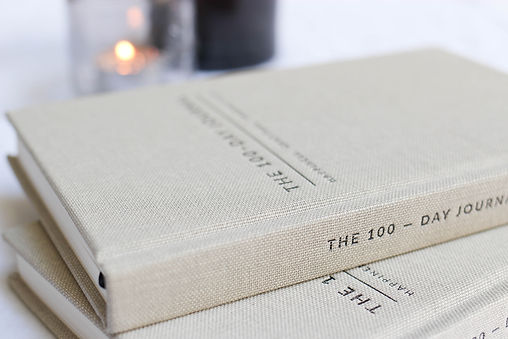 100 day journal-7.jpg