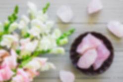Canva - Gladiolus and Rose Quartz on Whi