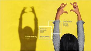Pantone2021年度代表色:極致灰+亮麗黃的hex code