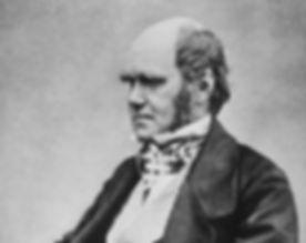 800px-Charles_Darwin_seated_crop.jpg