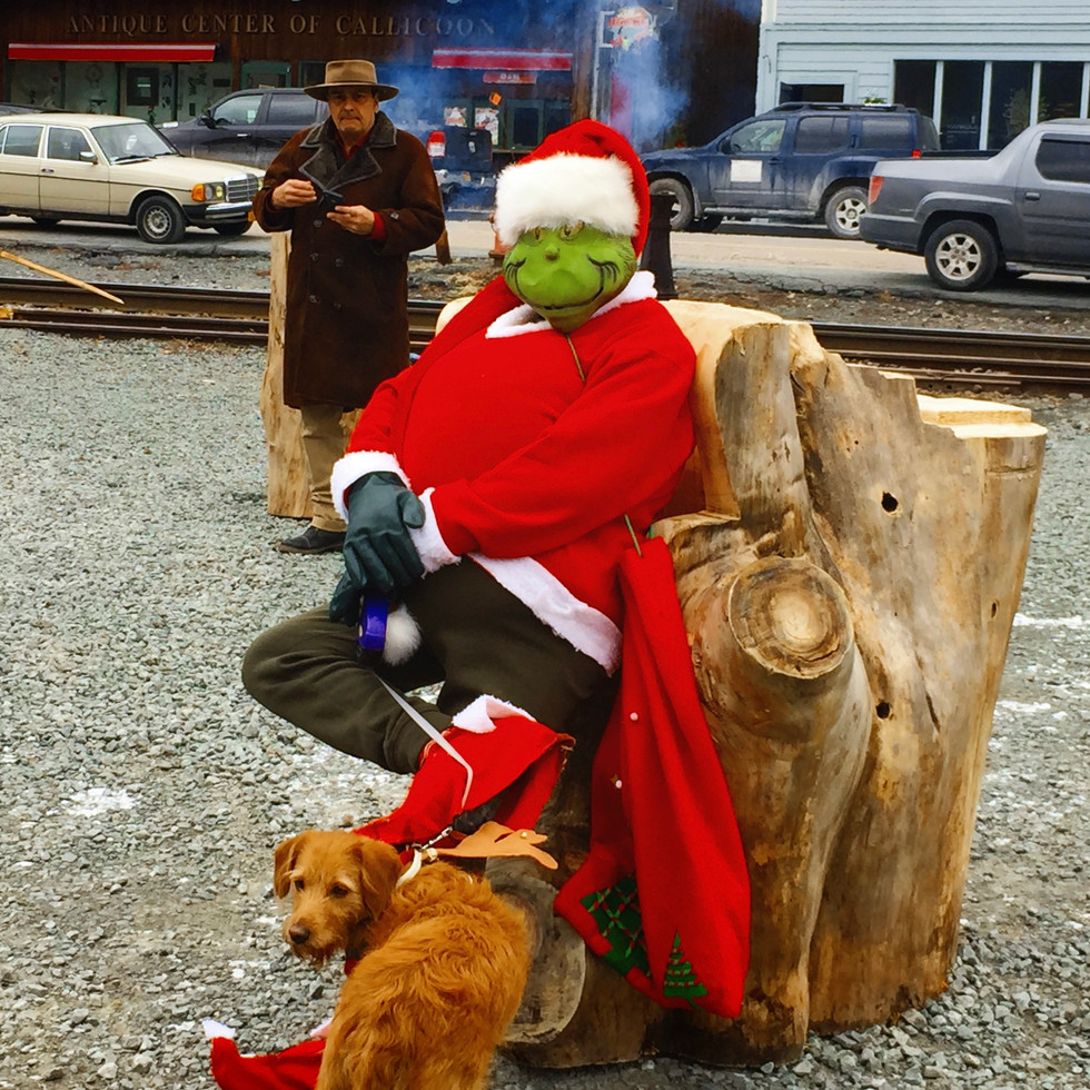 "Getting ""Grinchy"" In The Sullivan Catskills"