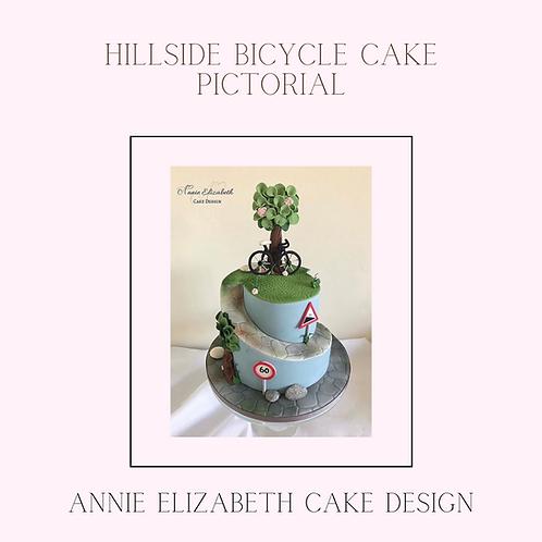 Carved Bicycle Cake Tutorial