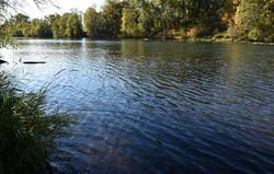 rogue river-fall