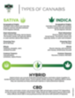 route66_Types_of_Cannabis-01.png