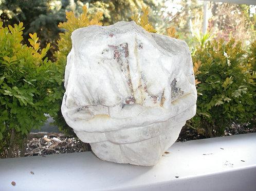 Piedra de mármol con fragmentos de pie y perro