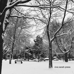 Toronto in Winter. 2017.