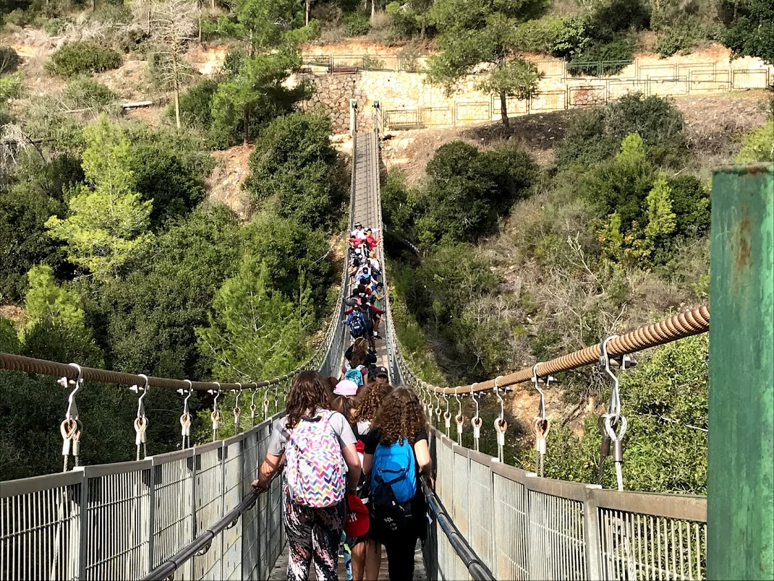 swinging bridge in nesher