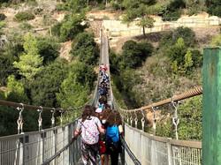 swinging bridge in nesher
