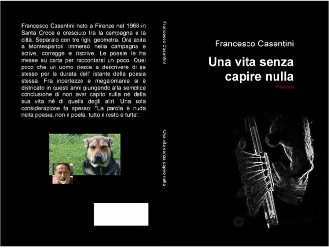 """Una vita senza capire nulla"", raccolta di Poesie di Francesco Casentini"
