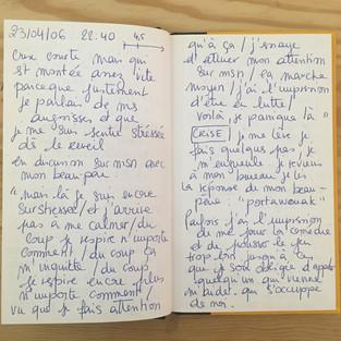 """""""Journal de l'angoisse"""" Adeline Grais-Cernea"""
