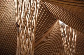 Architecture, le bois a le vent en poupe