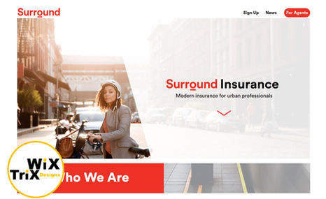Surround Insurance Mission: Create a modern/urban website for a hip n...