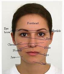 Face Reading Consultation