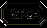 RSPCA_Logo_Big.png