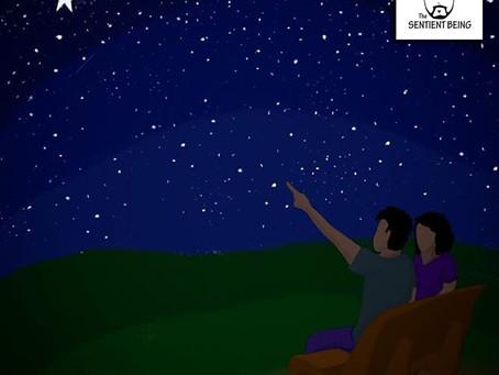 Dear Shooting Star