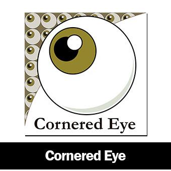 Cornered Eye Logo
