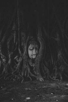 Overgrown Buddah