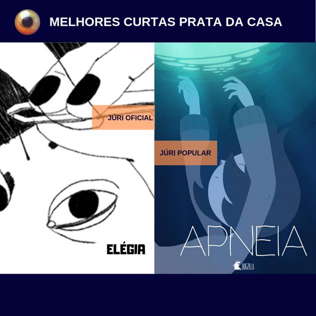 FILMES-PREMIADOS_animatiba_5