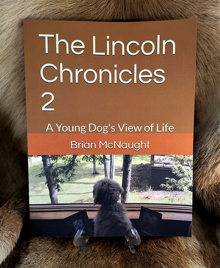 The Lincoln Chronicles 2: A Young Dog's View of Life