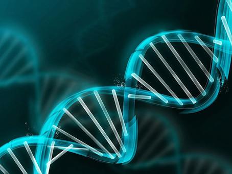 ¿Qué son el BRCA1 y el BRCA2?