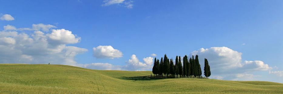 villa_tuscany_cafaggiolo_photos.jpg
