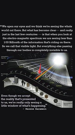 Electro-magnetic spectrum, frequency, visible light, quote, Nassim Haramein