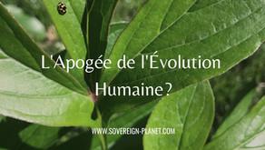 L'Apogée de l'Évolution Humaine?